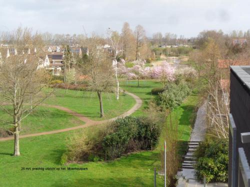 25 maart 2019: uitzicht op Moerhoutpark